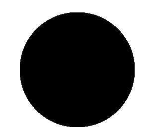 "ABRASIVE BLACK PAD 20"""